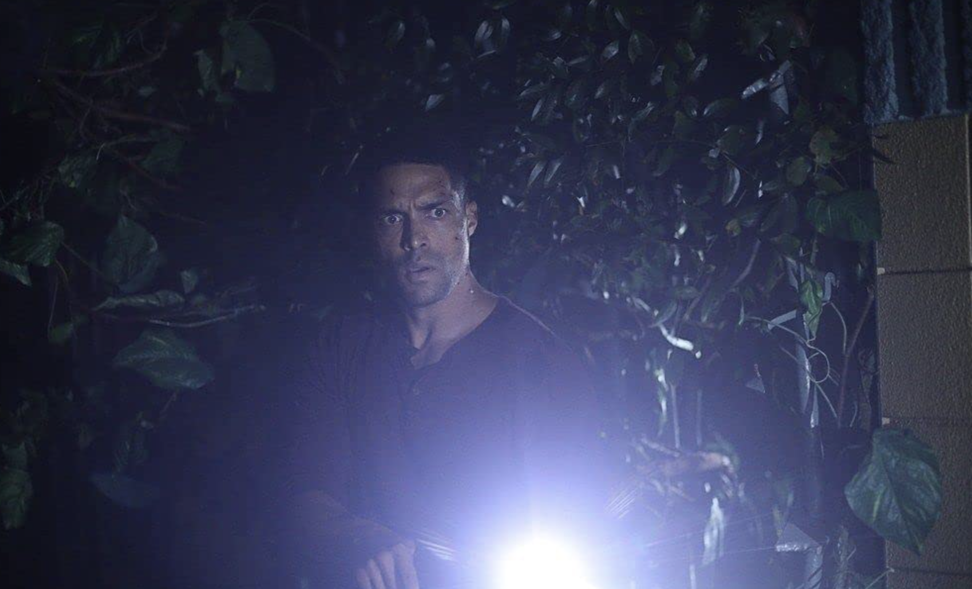 "Swamp Thing 1x10 ""Loose Ends"""